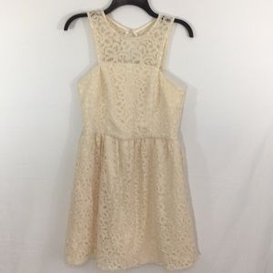 Gorgeous Vintage Style Lace Overlay Dress